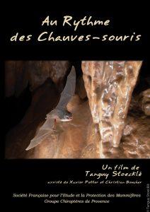Jaquette-film-Au-Rythme-des-chauves-souris