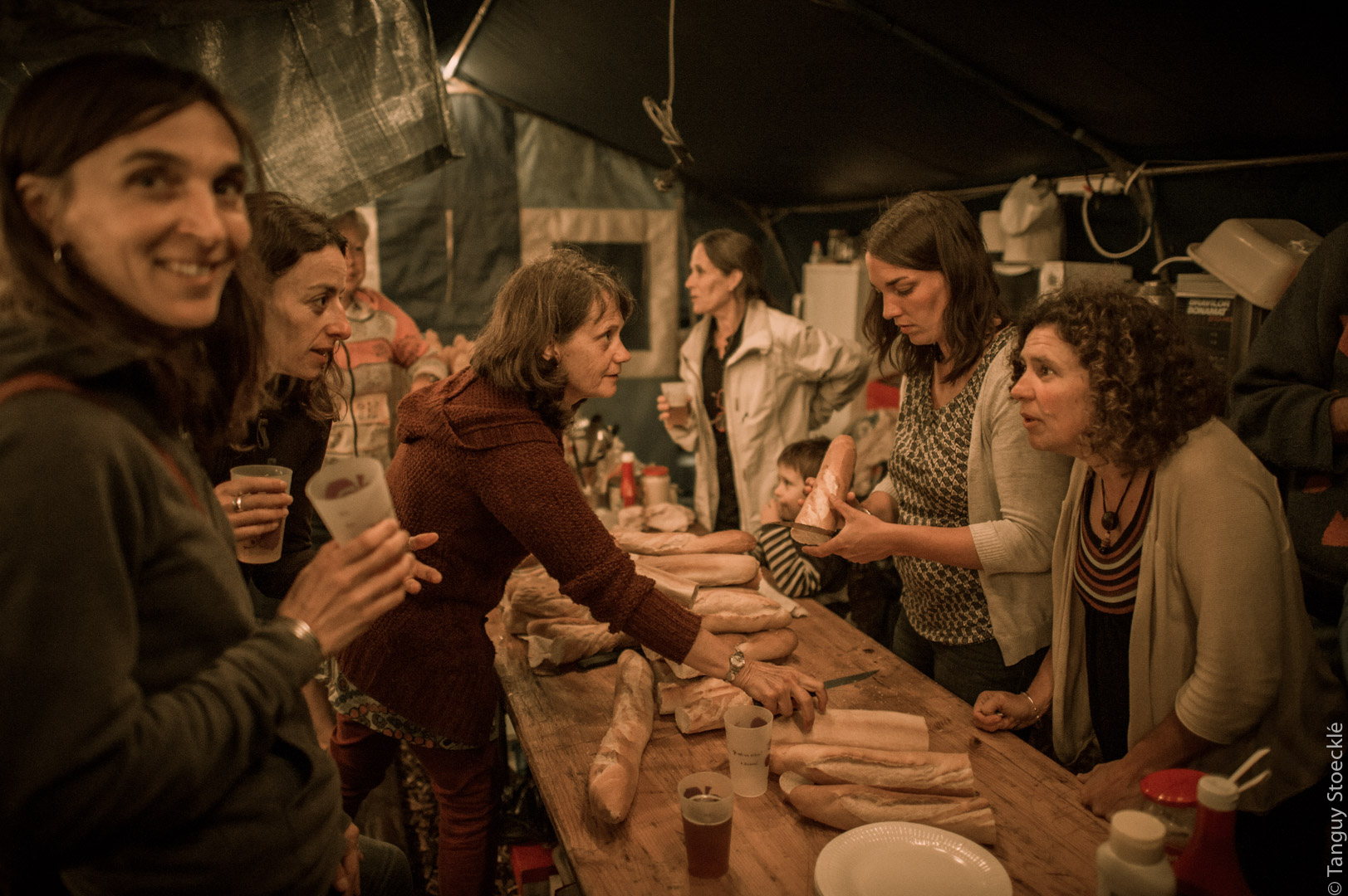 Festival de Viens 2014