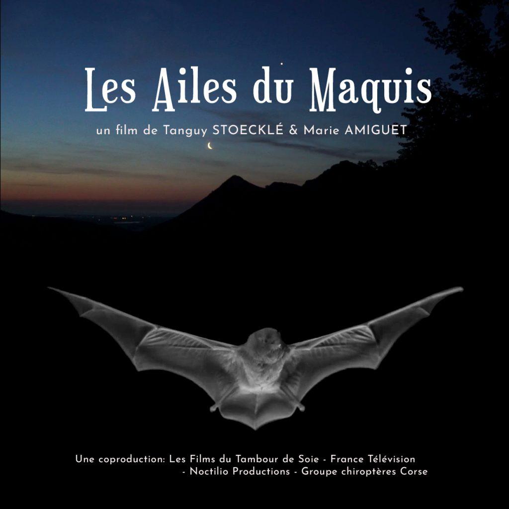 AfficheFilm_Les-ailes-du-maquis