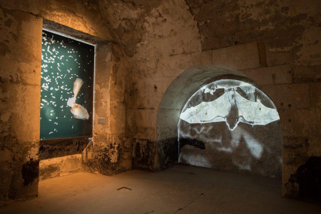 Mapping vidéo sur les murs et agrandissement type diapositive géante. Photos et films de Tanguy Stoecklé.