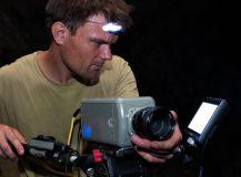 Une fascinante plongée dans l'intimité des chauves-souris – GEO mag