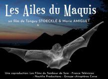 Les ailes du maquis, en ligne sur Youtube !
